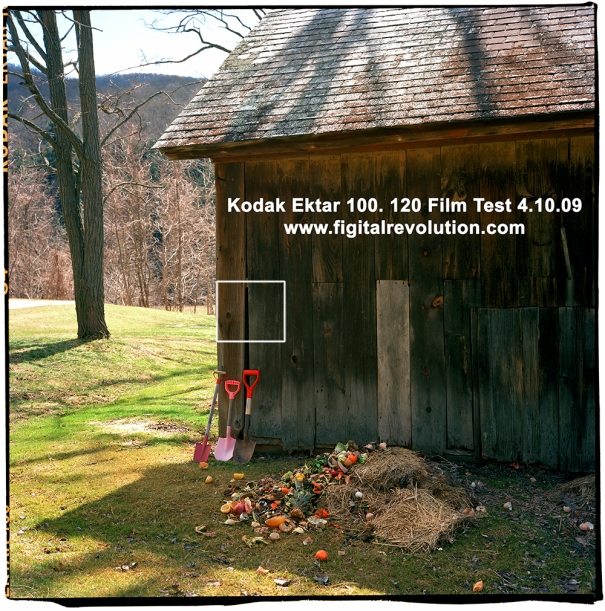 Full 120 Ektar Test Image